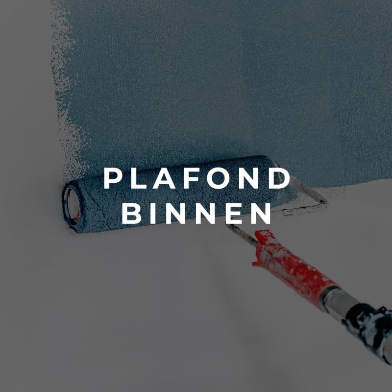 polarpaintshop_plafondbinnen